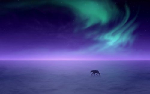 Aurora Borealis Alaska 1280x800 wide wallpapers